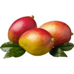 Mango Tommy 1 Lb
