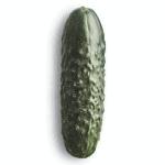 Pepino Cohombro 1 Lb